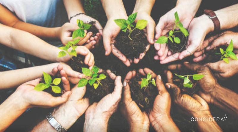 Trabajando para transformar nuestra sociedad: la importancia de la Educación Ambiental